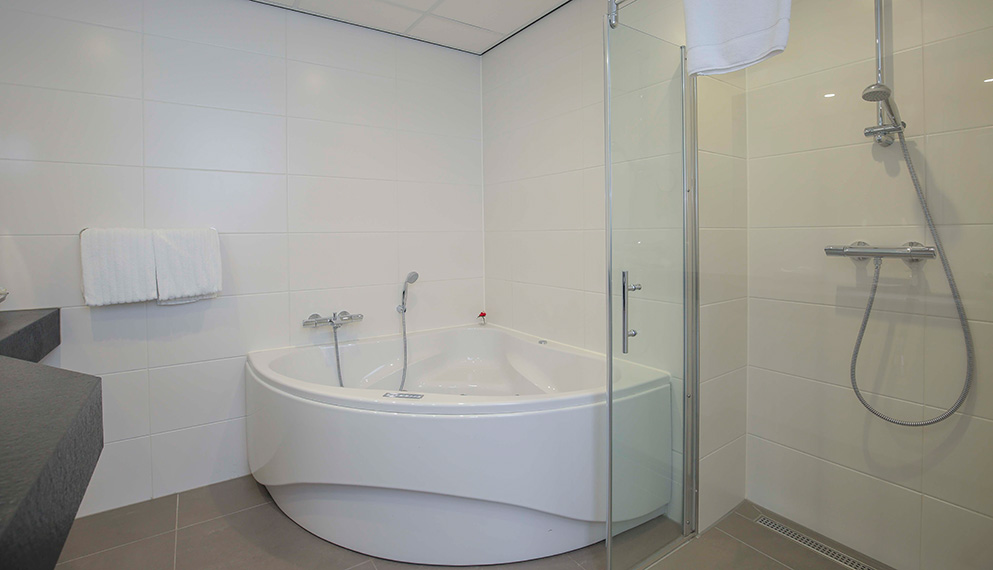 The Bathroom Has A Jacuzzi With Shower Walk In Toilet And Hair Dryer All Suites Have Balcony Stunning View Over Rhine